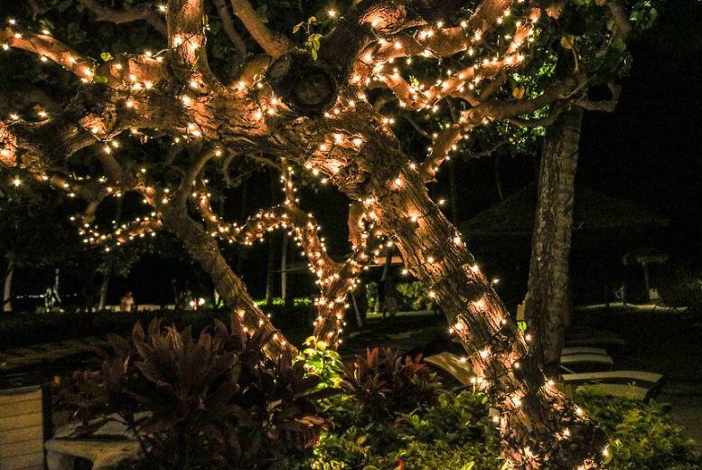 50 led fairy lights