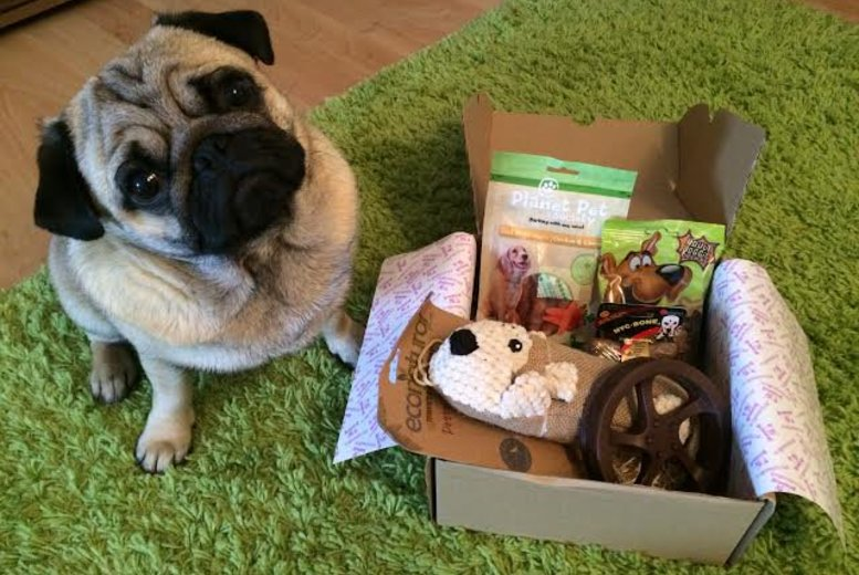 £6 instead of £19 for a tailor-made surprise treat box for your dog, from Barkbeats - save 68%