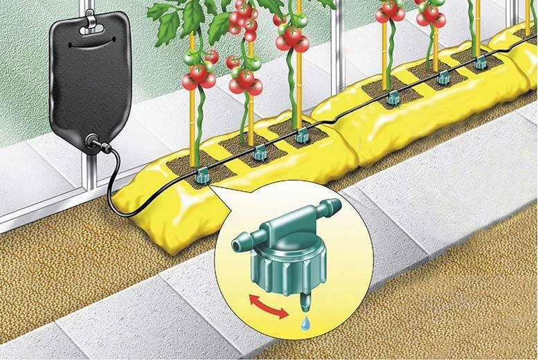 10.5L Instant Drip Gravity Plant Watering System for £5.99