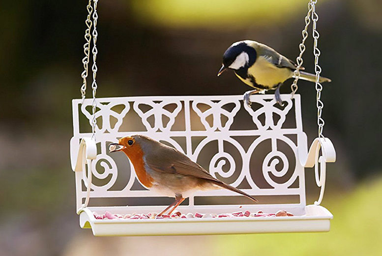 Deluxe Swing Seat Hanging Bird Feeder for £9.99
