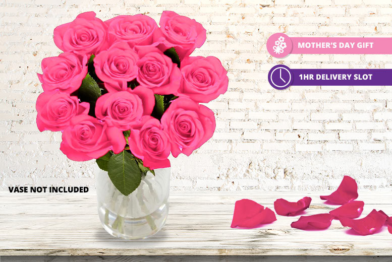12 Luxury Giftwrapped Mother's Day Pink Roses for £19.99