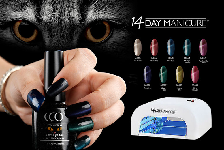 Cat's Eye Gel Nail Kit with UV Lamp – 2 or 4 Colours! for £32.00