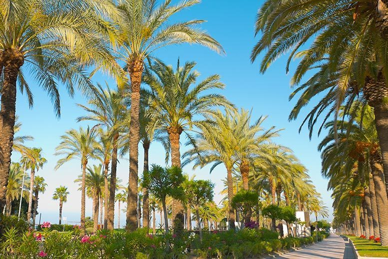 From £129pp (from Tour Center) for a three-night all-inclusive Costa Dorada break with flights, from £209pp for five nights, from £249pp for seven nights - save up to 23%