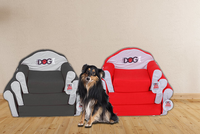 £16.99 instead of £31.00 (from Dream Price Direct) for a medium dog sofa bed, £19.99 for a large bed - choose black or red and save up to 45%