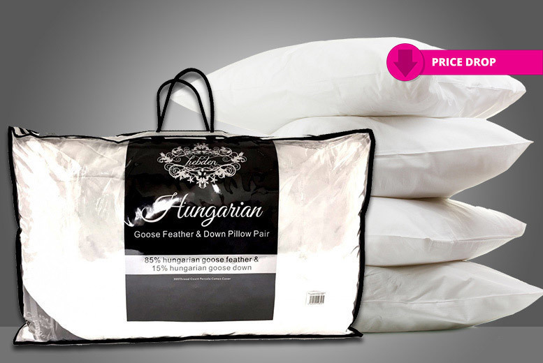 4 Hungarian Goose Feather & Down Pillows