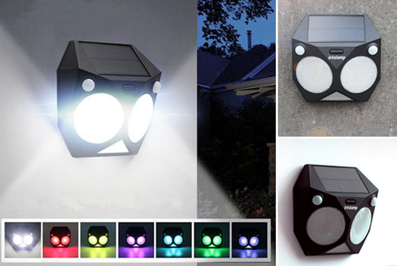 Dual Motion-Activated Colour-Changing Solar LED light for £15.99