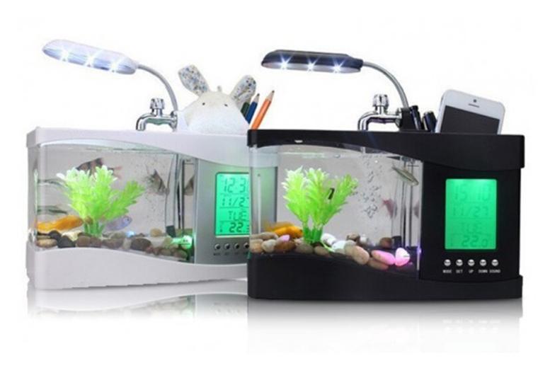 3-in-1 Fish Tank, Alarm Clock & Desk Organiser – 2 Colours! for £19.00