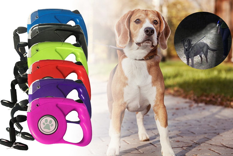 2-in-1 Extra-Long Dog Lead & Torch – 6 Colours! for £7.99