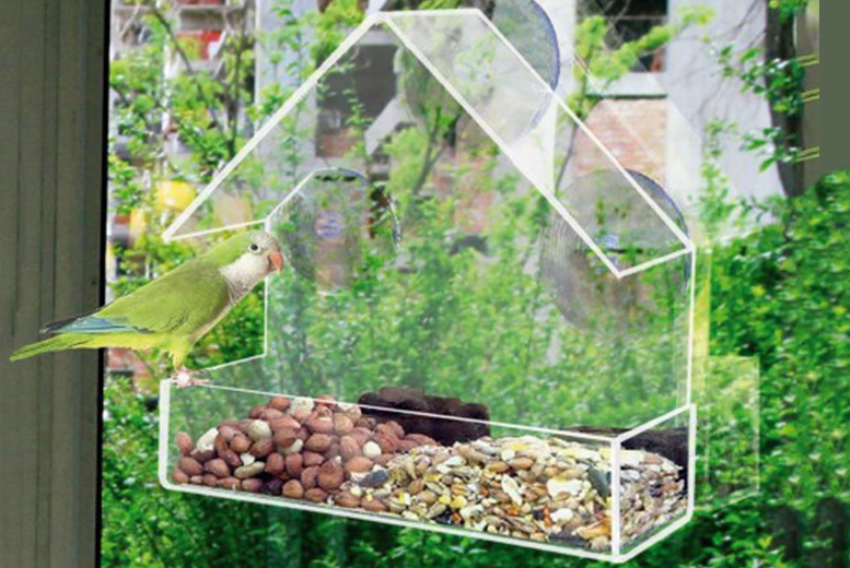 1 or 2 Clear Window Bird Feeders from £4.99