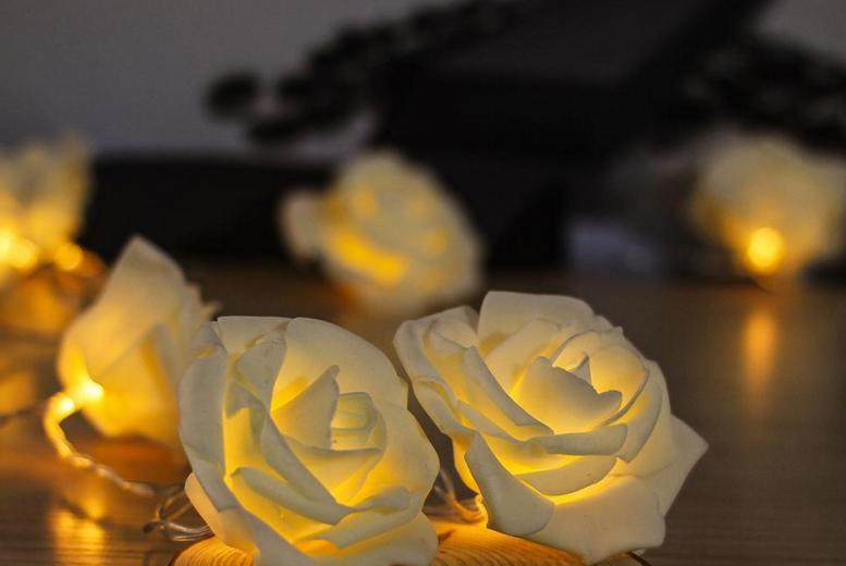 Warm White LED Rose Lights for £3.99