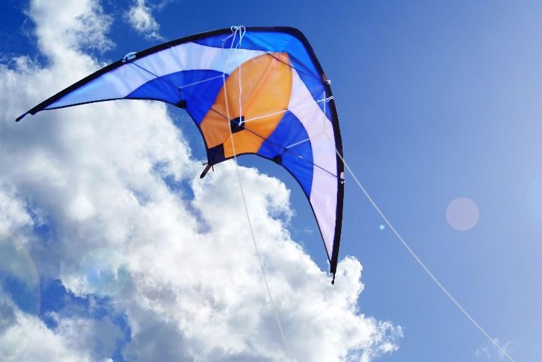 Professional Sport Stunt Kite for £11.00