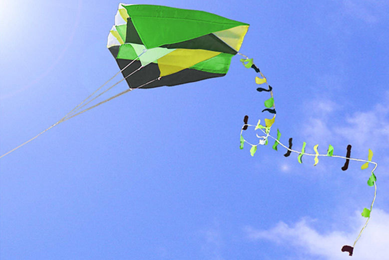 Easy to Fly Pocket Kite for £5.99