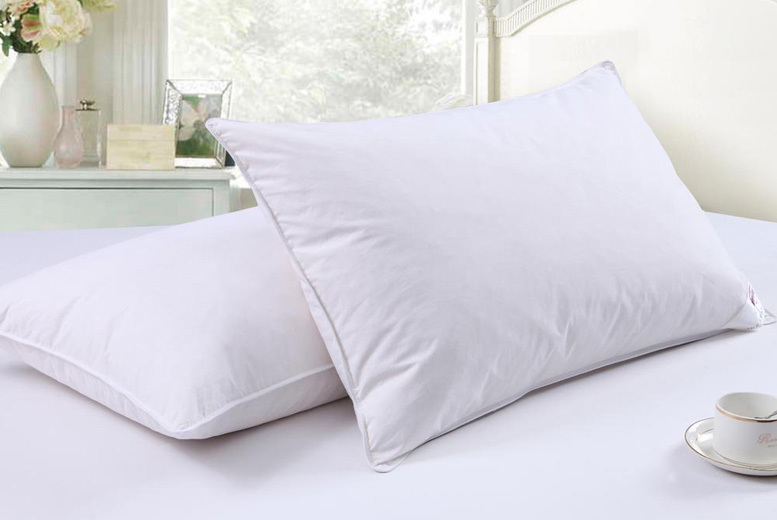4 Natural Goose Feather & Down Pillows