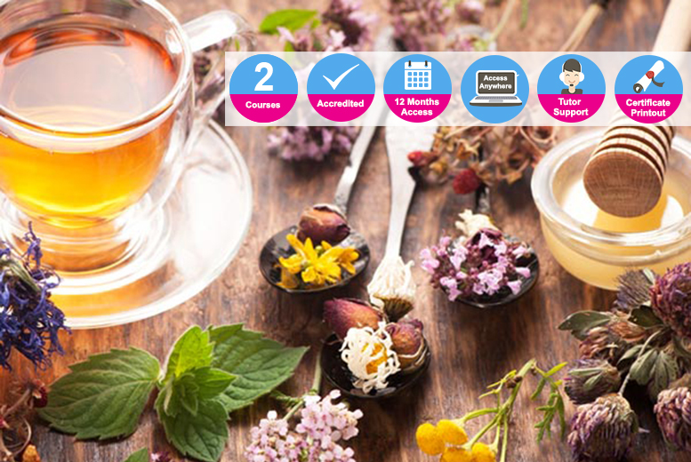 Beginner & Advanced Herbalist Mastery Courses from £14.00