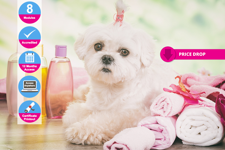 Ultimate Dog Grooming Course