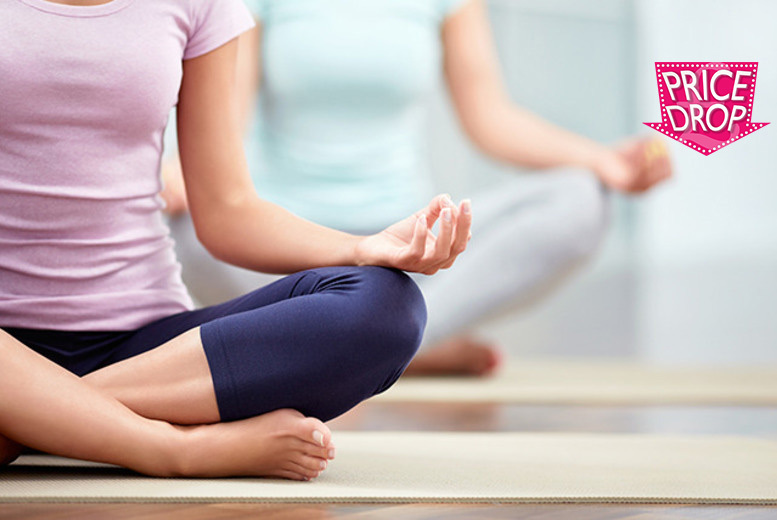 £16 (from Centre of Excellence) for an online yoga diploma course - know your asana from your elbow