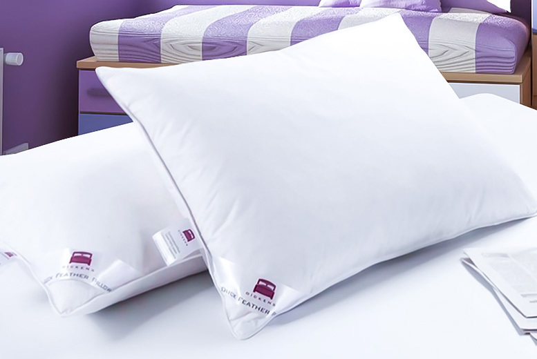 Set of 4 Luxury Duck Feather Pillows