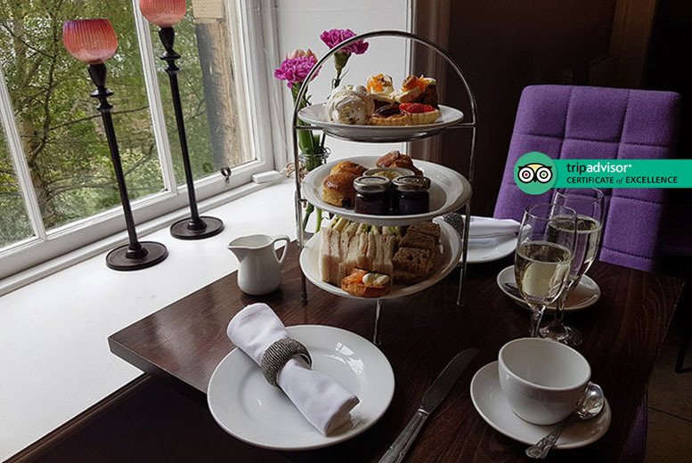 Edinburgh: Afternoon Tea for 2 @ Owl & Deer, City Centre from £15