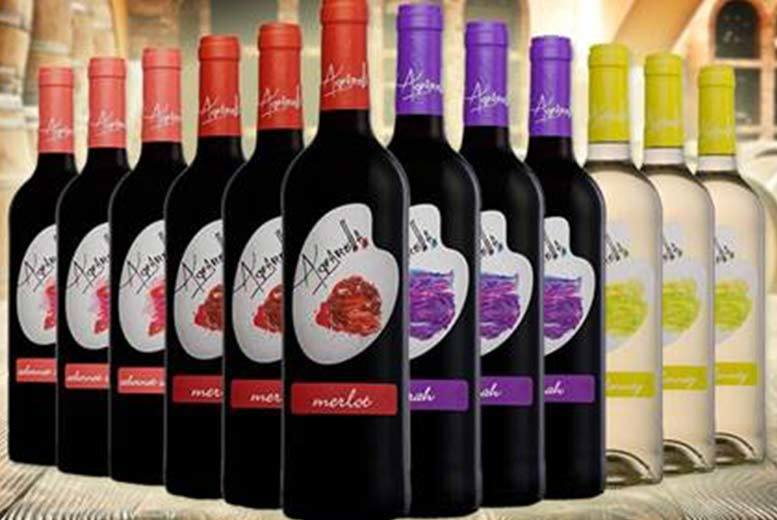 £39 instead of £150.15 (from Eassy Gifts) for 12 bottles of award-winning Cal Y Canto white wine - save 74%