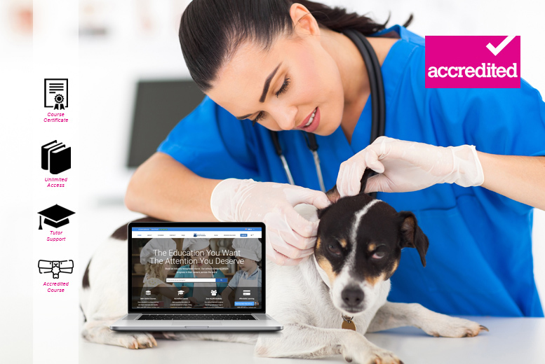 Accredited Veterinary Nursing Course for £16