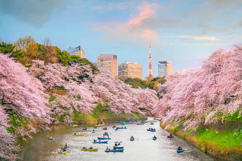 Long Haul & Cruises: 8nt Tokyo, Osaka & Kyoto & Flights - Mt Fuji & Bullet Train Options!